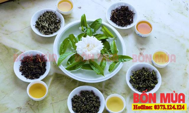Công dụng khử mùi hữu ích từ lá trà xanh khô